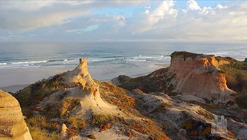 April 30, 2017 - #4572 Music and the Spoken Word