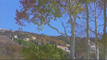 October 5, 2014 - #4438 Music & The Spoken Word